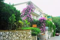 4019 - A-4019-a - Apartmani Podgora
