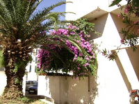 Holiday home 164439 - code 166732 - omis apartment for two person