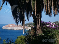 Holiday home 159835 - code 157060 - dubrovnik apartment old city