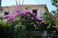 Holiday home 163538 - code 164868 - Apartments Supetar