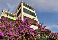 Holiday home 141510 - code 120919 - apartments makarska near sea