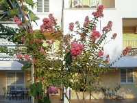 Holiday home 166539 - code 171066 - Rooms Zaboric