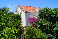 Holiday home 175254 - code 192096 - dubrovnik apartment old city