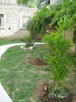 Holiday home 173643 - code 188313 - apartments makarska near sea