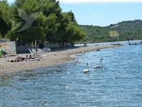 Holiday home 159199 - code 155665 - Apartments Pirovac