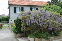 Holiday home 109134 - code 9219 - Novi Vinodolski