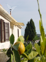 Ferienhaus 170046 - Code 180576 - Lukoran