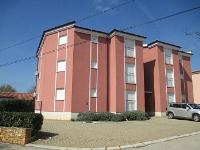 kuća za odmor 171330 - šifra 183210 - Apartmani Vabriga