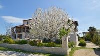 kuća za odmor 156207 - šifra 149617 - Vodnjan adrialin.hr
