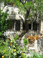 kuća za odmor 142770 - šifra 124005 - dubrovnik apartman u starom gradu