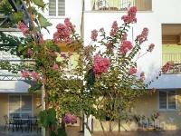 kuća za odmor 166539 - šifra 171066 - Žaborić Apartman