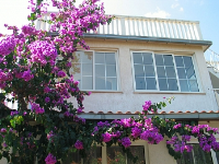 kuća za odmor 147966 - šifra 134161 - Apartmani Orebic