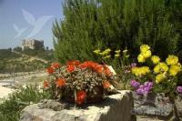 Holiday home 102927 - code 3007 - Senj