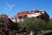 Holiday home 158474 - code 154176 - Apartments Ugljan
