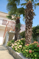 Holiday home 172782 - code 186150 - Rooms Kanfanar