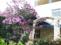 Holiday home 158990 - code 155201 - Apartments Marusici