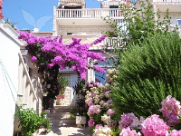 Holiday home 141850 - code 121875 - Apartments Bol