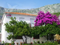 Holiday home 143314 - code 125593 - Apartments Drvenik