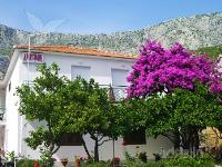 Holiday home 143314 - code 125605 - Apartments Drvenik