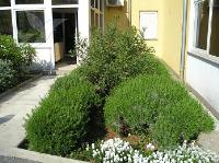 Ferienhaus 144393 - Code 128192 - Lovran