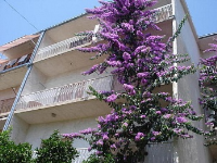 Holiday home 158447 - code 154128 - omis apartment for two person