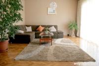 Sunny&spacious apartment Adrian - Sunny&spacious apartment Adrian - Ferienwohnung Bibinje