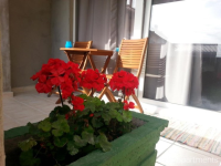 DORIS - DORIS - Apartments Zadar