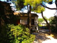 Apartments Vesna - Room - Apartments Biograd na Moru