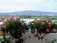Apartman Rosa Gallica - A3 - Zagreb