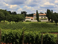 Wine Hotel and Restaurant Meneghetti - Standard Double or Twin Room - Bale