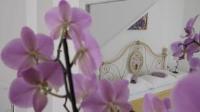 Villa Claudia - Dvokrevetna soba Superior s bračnim krevetom - Sobe Fazana