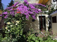 Room in Little House Marjan - Chambre Double de Luxe - Vue sur Jardin - Maisons Split