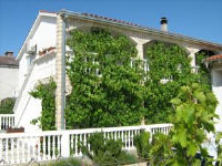 Apartments Anton - One-Bedroom Apartment with Shared Terrace - Apartments Vodice