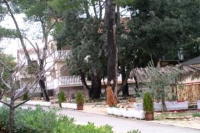 Apartment in Petrcane Dalmatia V - Apartman s 1 spavaćom sobom - Apartmani Petrcane