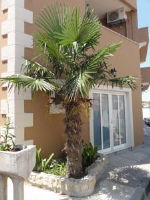 Liberty Apartments - Chambre Double avec Balcon - Vue sur Mer - Rue Josipa Jurja Strossmayera - zadar chambres