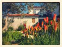 Apartments Dolores - Deluxe apartman - Apartmani Barbat na Rabu