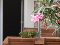 Apartment Ivan - One-Bedroom Apartment with Terrace and Garden View - booking.com pula