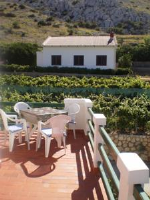 Apartments Pag Holiday - Apartment with Balcony - Pag