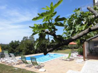 Apartments Villa Verde - One-Bedroom Apartment with Balcony and Garden View - apartments in croatia
