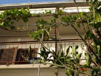 Apartments Jakić - Chambre Double avec Balcon - Vue sur Mer - Podgora