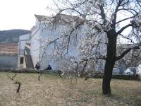 Apartments Marušić - Apartment mit 1 Schlafzimmer, Balkon und Meerblick - Vinisce