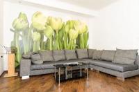 Apartments Vanessa - Studio - dubrovnik apartman u starom gradu