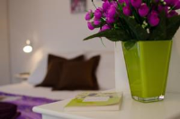 Apartment Danijela - Apartman s 1 spavaćom sobom - Apartmani Trogir