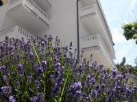 Apartments Ivana - Apartment mit 2 Schlafzimmern und Balkon - 1. Etage - Ferienwohnung Palit