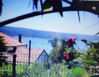 Guesthouse Villa Juric - Studio Lavanda mit Terrasse - Drage