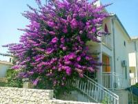 Apartments Dalmi - Apartment mit 2 Schlafzimmern - Ferienwohnung Razanj