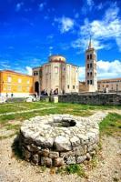Apartment Olives - Apartment - Ground Floor - Zadar