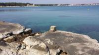 Apartments Batovanja - Apartment with Sea View - Vir
