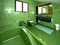 Apartments Villa Falcon - Apartment mit 1 Schlafzimmer - Funtana