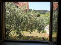 Guest House Butorac - Studio with Sea View - Kolocep